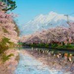 お花見の人気名所 弘前公園の桜!さくらまつり、開花、見どころ