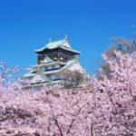 お花見の名所 大阪城公園の桜!ライトアップ、開花、見どころ