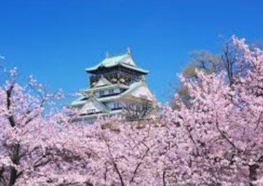お花見の名所 大阪城公園の桜!ライトアップ・開花・見どころ