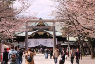 お花見の名所 靖国神社の桜!開花宣言・桜祭り・ライトアップ