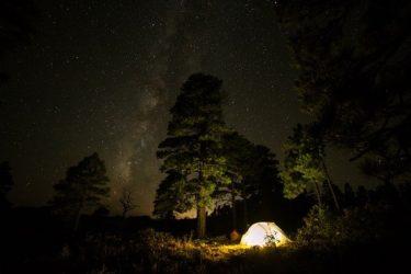 キャンプ場の虫除け対策で最も効果のある6つのグッズを紹介