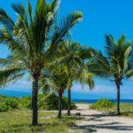 宮崎県の人気キャンプ場おすすめ21選!海など南国あふれる綺麗なキャンプ場