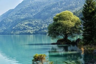 滋賀県のキャンプ場人気おすすめ25選!琵琶湖や無料キャンプも楽しもう