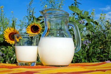豆乳、牛乳のどっちがダイエットに効果的?カロリーや栄養成分から説明